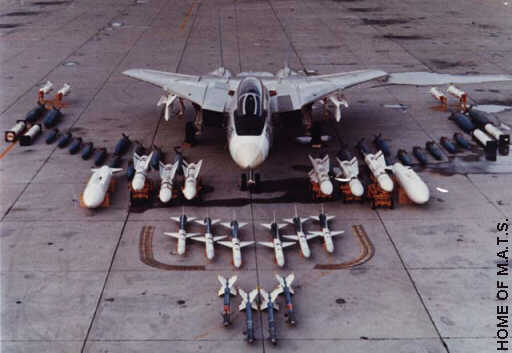 f14-detail-weapons-01l.jpg
