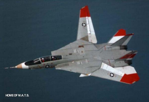 Fotos de F-4 Phantom y F-14 Tomcat  volando con las alas plegadas F14-detail-wsm-04l